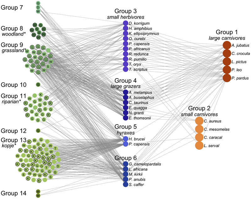 Trevorbedford january 3 2012 weve also made an interactive version of this figure presenting the network in a force directed layout ed coded this up in d3js based on ccuart Choice Image